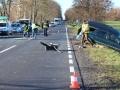 DK36 - wypadek (28)