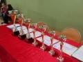 Turniej Bocci Lubin ZSiPO (7)