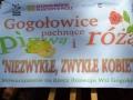 Gogołowice_pigwa_i_róża2