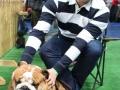wystawa psów w Lubinie (3)