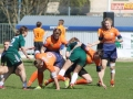rugby7 206