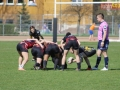 rugby7 256