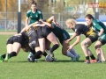 rugby7 419