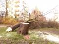 Reja wycinka drzew (7)