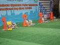 międzynarodowa wystawa psów (27)