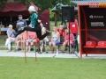 sportowo-pozarnicze 136