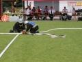 sportowo-pozarnicze 153