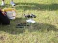 piknik bezpieczne wakacje (8)