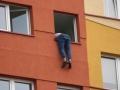 Sokola samobójca (2)