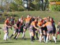 rugby miedziowi alfa 018