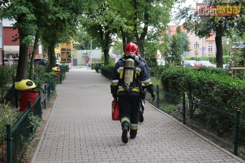 pozar-sklodowskiej005