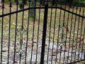 cmentarz-zaborow00003_male
