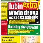 thumbnail of LubinExtra! nr 43