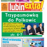 thumbnail of LubinExtra! nr 45