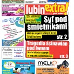 thumbnail of LubinExtra! nr 50