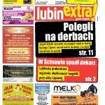 thumbnail of LubinExtra! nr 53