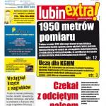 thumbnail of LubinExtra! nr 91