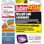 thumbnail of LubinExtra! nr 95