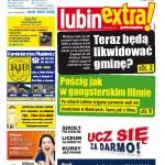 thumbnail of LubinExtra! nr 99