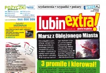 thumbnail of LubinExtra nr 100