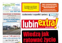 thumbnail of LubinExtra 109