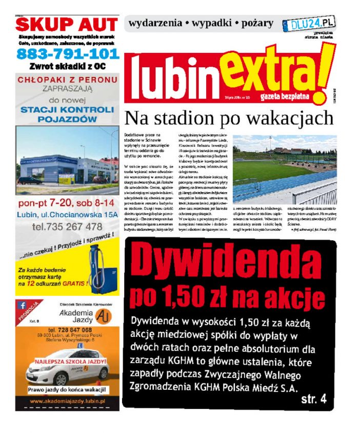 thumbnail of LubinExtra 120