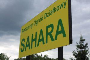 ROD Sahara (1)