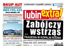 thumbnail of LubinExtra 130