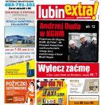 thumbnail of LubinExtra 133