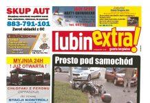 thumbnail of LubinExtra 152